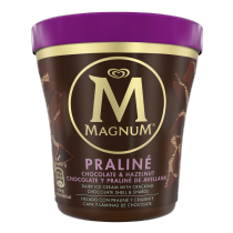 PNG - 8714100814499_Magnum Pint Chocolate Hazelnut Praline